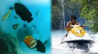 2013年5月11日、タンジュン・ベノア岬の一番北東にある、タンジュン・サリ・マリンスポーツの激安体験ダイビング取材に行ってきました!ヨッシャー、初ダイビング♪激安ですがランチ付き(^^)v期待と不安で胸いっぱいとはまさ...