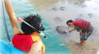 ヒロチャン新メニューの「お子様無料!亀の島とシュノーケル体験」は、お子様がいる家族にぴったりのメニューになっています。 日本ではなかなか触れ合えない動物たちと触れ合うことが出来る亀の島、 実際の海で暮らしている色とりどり...
