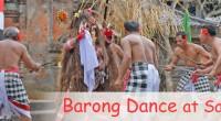 2009年10月30日、サハ・デワ舞踊団を取材してきました!ここは毎日バロンダンスを公演しているグループで、場 所はバリ舞踊で有名なバトゥブラン村にあります。バトゥブラン村は南部リゾートからウブドへ向かう途中にあり、周辺...