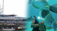 2015年10月22日。バリ島で1番人気のクルージング会社、バリハイ社のリーフクルーズ+アクアノットの取材へと行って来ました。アクアノットとはバリ島で人気のマリンスポーツで、ヘルメットを被り、海底を散歩するアクティビティ...